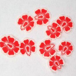 Ozdoby na paznokcie czerwone kwiatki